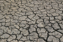 Cracked earth and dry soil texture. Cracked earth and dry soil texture for the design nature background royalty free stock photos