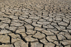 Cracked earth and dry soil texture. Cracked earth and dry soil texture for the design nature background stock images