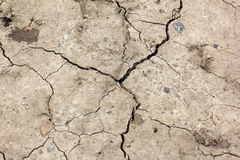 Cracked earth. Global warming - parched earth Stock Photo