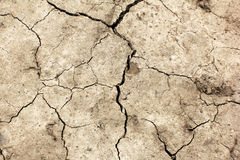 Cracked earth. Global warming - parched earth Stock Image