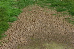 Cracked earth with grass Stock Images