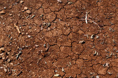 Cracked earth with heat and scorching sun. desert Royalty Free Stock Images