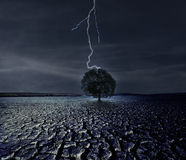 Cracked Earth and The Lightning royalty free stock images