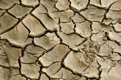 Cracked earth. A cracked earth macro backround texture Royalty Free Stock Photography