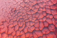 Cracked earth, metaphoric for climate change and global warming. royalty free stock images