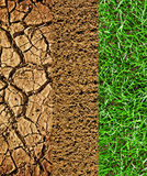 Cracked earth, prepared soil newly sown grass Royalty Free Stock Image