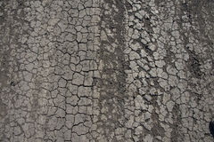 Cracked earth on road Royalty Free Stock Photo