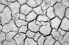 Cracked earth. saline, salt-marsh. texture. Land prone to erosion royalty free stock image