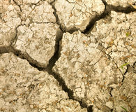 Cracked earth soil. Royalty Free Stock Photography