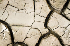 Cracked earth sun burned background Stock Image