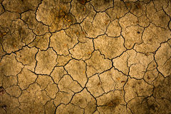 Cracked earth surface Royalty Free Stock Image
