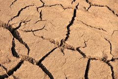Cracked Earth Texture Stock Images