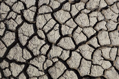 Cracked earth texture. Dry cracked earth texture in hot sunshine stock images