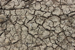 Cracked earth. Royalty Free Stock Photos