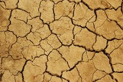 Cracked earth texture. Like takyr royalty free stock image
