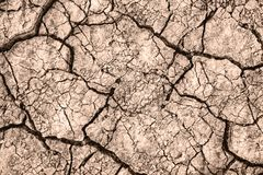 Cracked earth. Texture of cracks in the dry earth. Background wallpaper for design and creativity royalty free stock photo