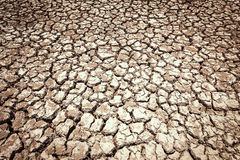 Cracked earth texture in northeast of Thailand. Close up cracked of earth texture in northeast of Thailand royalty free stock photo
