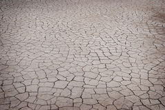 Cracked earth texture Royalty Free Stock Image