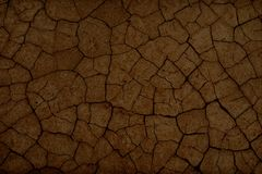 Cracked earth texture. Threat to the environment royalty free stock photos