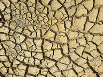 Cracked earth textured Stock Images
