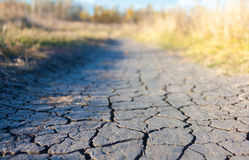 Cracked earth on the trail in the field Stock Images