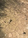 Cracked Earth. The earth is cracked by weather Royalty Free Stock Photography