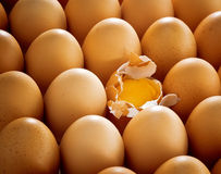 Cracked egg Stock Images