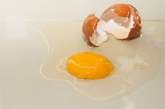 Cracked egg Stock Photography