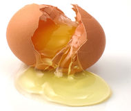 Cracked egg. Cracked brown egg with yolk dripping Royalty Free Stock Photography