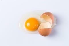 Cracked egg. Close up of cracked egg Royalty Free Stock Photo