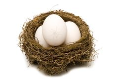 A Cracked Egg in Every Nest Royalty Free Stock Photos