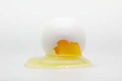 Cracked Egg Stock Image