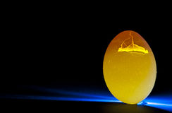 Cracked egg shell Royalty Free Stock Images