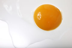 Cracked egg and shell Stock Photography