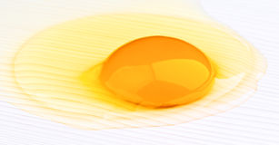 Cracked egg Royalty Free Stock Image