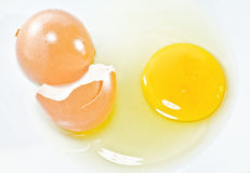 Cracked eggs. On white background royalty free stock images