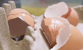 Cracked Eggshells in Carton. Stock Image
