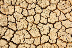 Cracked floor Stock Image