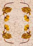 Cracked flower border. Cracked wall flower border, brown and yellow stock photos