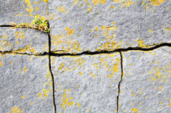 Free Cracked Granite Background Stock Photo - 8503010