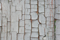 Cracked gray paint on the boards. background. Royalty Free Stock Image