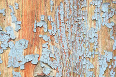 Cracked gray paint on old plywood. background. Stock Photo