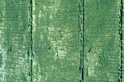 Cracked green texture Royalty Free Stock Photos
