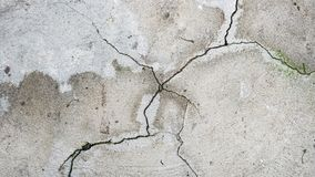 A cracked cement floor with green moss stock photo