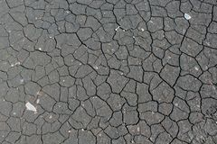Cracked grey earth as a background and texture stock image