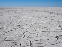 Cracked grey and white soil of giant dry salt flat or salt pan in Botswana, Southern Africa Stock Photos