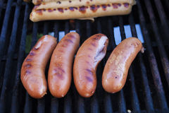 Cracked grilled sausage Stock Images