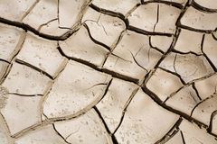 Cracked ground. Close up of cracked ground in the desert royalty free stock photography