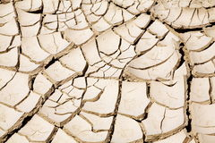 Cracked ground. Close up of cracked ground in the desert stock photo