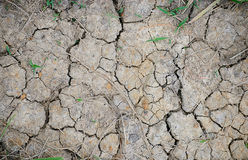Cracked Ground. Cracked soil with grass background Stock Photos